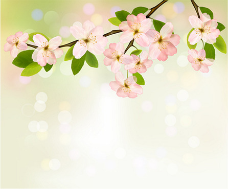 Spring Flowers And How To Use The Mesh Tool In Adobe Illustrator