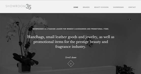 The homepage for Showroom 35, the company I interned for this summer.