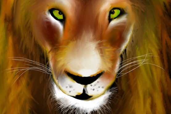 <strong>Lion Sketch</strong><br />Vanesa Jeric, 2013<br />Procreate, iPad