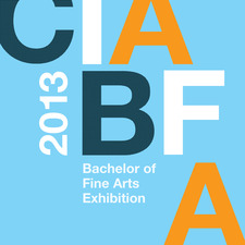 2013 Bachelor of Fine Art Exhibition