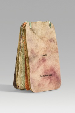 An example of an artist book created by Aimee Lee.