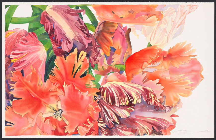 Gary Alan Bukovnik '71 (American, 1947-  ). Watercolorist, printmaker. Iridescent Tulips (1991). Color lithograph, 88.4 x 137.1 cm. The Cleveland Museum of Art, Gift of Gary Bukovnik in honor of Henry Hawley 2011.505