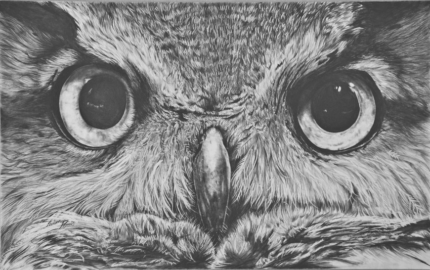 <strong>Great Horned Owl - Honorable Mention, Visual Arts Category</strong><br />Madison  Perry, Senior<br />Twin Valley South High School; Hometown: West Alexandria, OH
