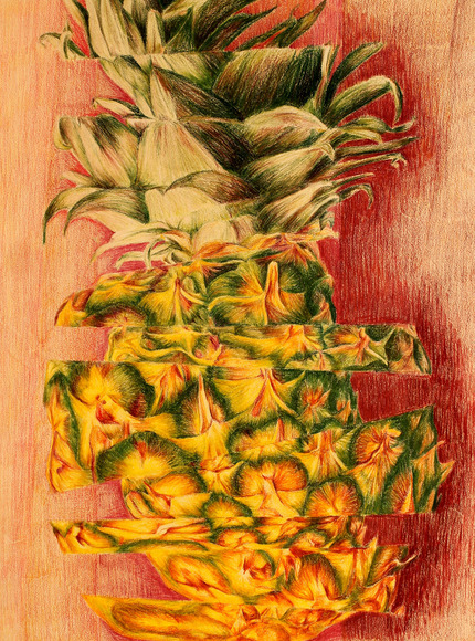 <strong>Pineapple - Honorable Mention, Visual Arts Category</strong><br />Dilki Kandanarachchi, Senior<br />Brecksville-Broadview Hts High School; Hometown: Brecksville, OH