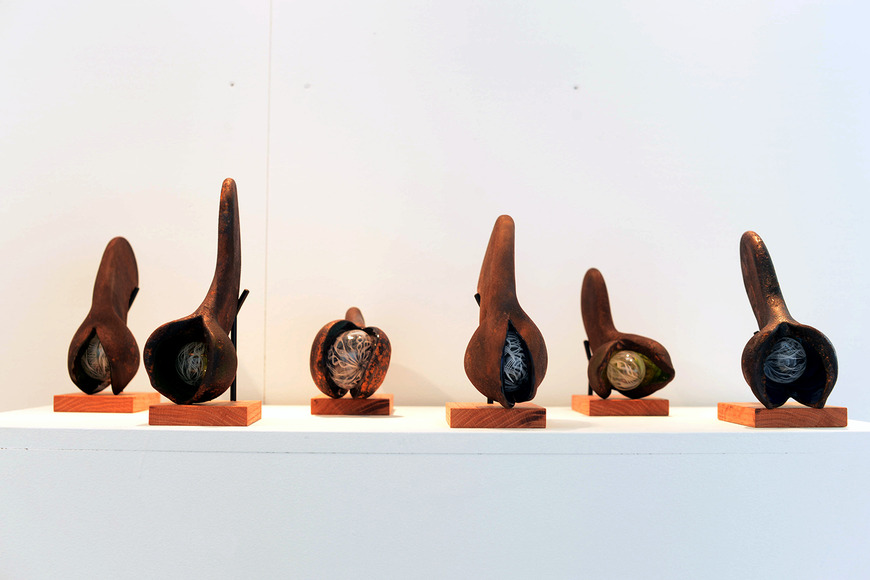 <strong>Maple Seed Pod Series (1-6)</strong><br />Jess Luketic '13, 2013<br />Glass, steel, wood