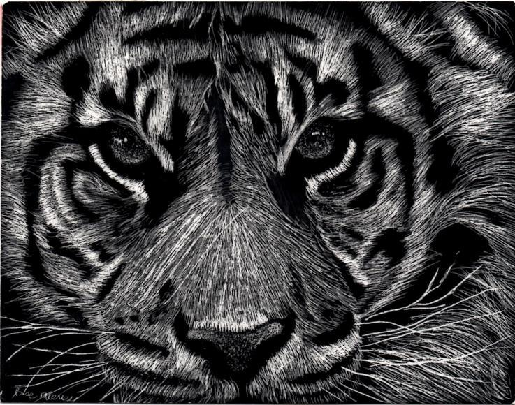 <strong>Tiger - Honorable Mention, Visual Arts Category</strong><br />Jose Aceves, Freshman<br />New Open World Academy; Hometown: Los Angeles, CA