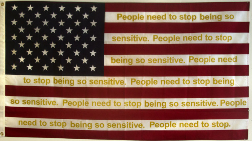 <strong>Flag</strong><br />Teresa Martinez, 2014<br />
