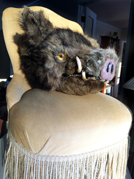 <strong>Wild Boar Head on Chair - Honorable Mention, Visual Arts Category</strong><br />Julie Clement, Sophomore<br />Princeton High School; Hometown: Princeton, NJ