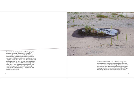 <strong>Spread From Vol 1. of Palimpsest, &quot;The Erie&quot;</strong><br />Mari Hulick (design) Mary Jo Toles (photography)Book