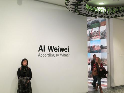 <strong>Ai Weiwei's Solo Exhibition (Washington DC)</strong><br />, 2013<br />